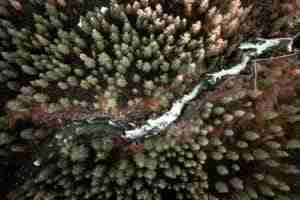 tumalo falls oregón