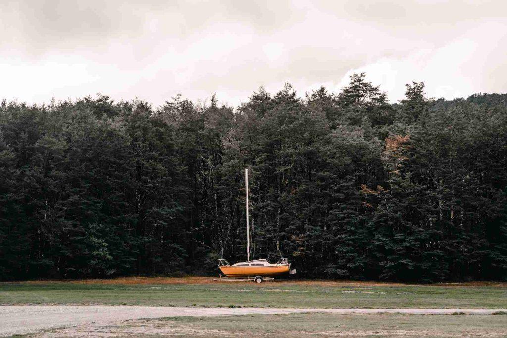 bosque nelson lakes