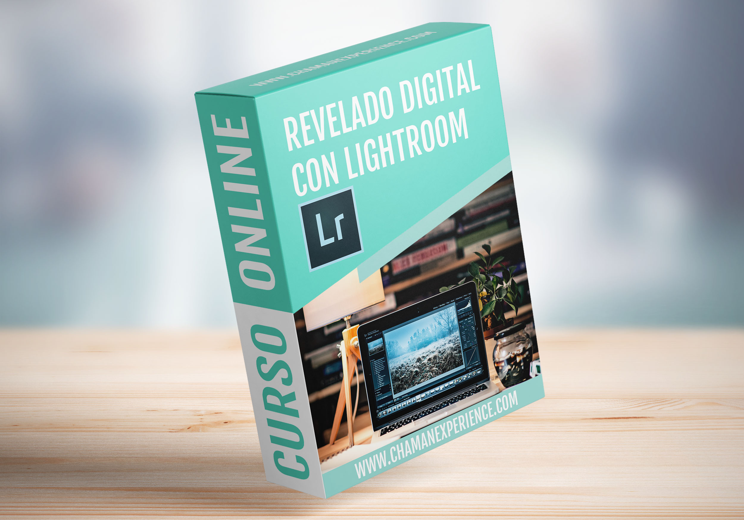 curso de revelado en Lightroom